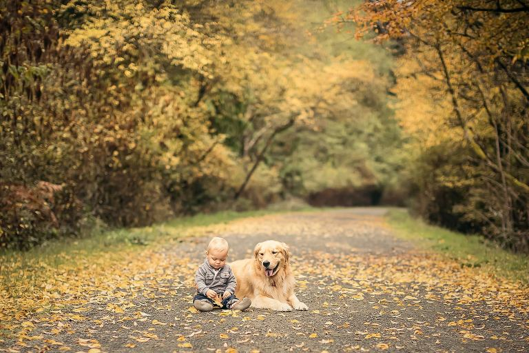 baby and golden retriever in fall